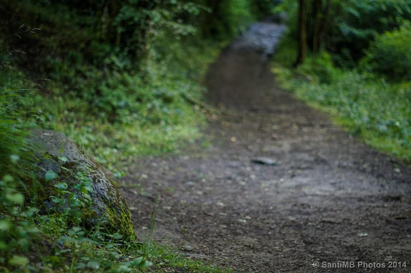 El camino que no hay que seguir