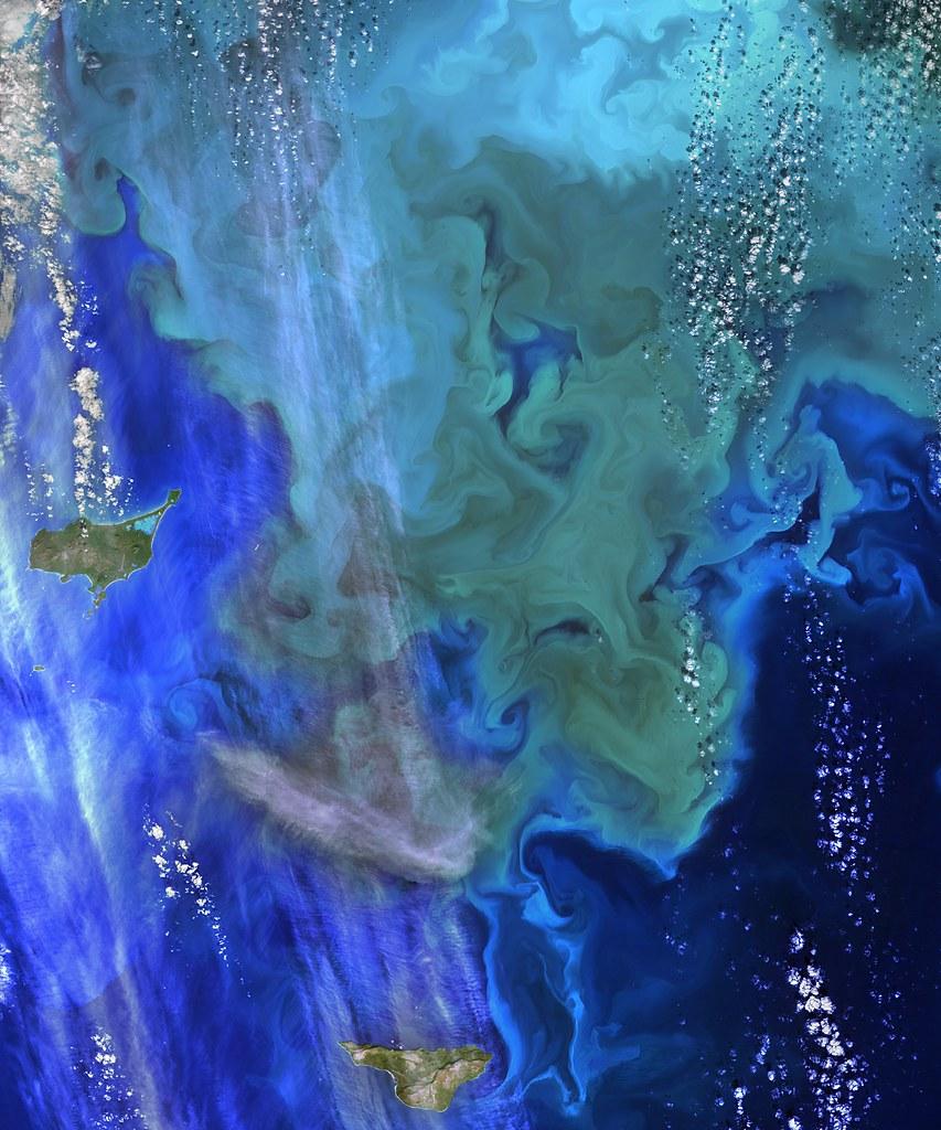 nasa ocean color - photo #26