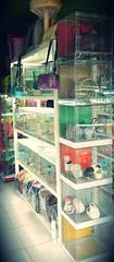 Shop quận 5 hamster