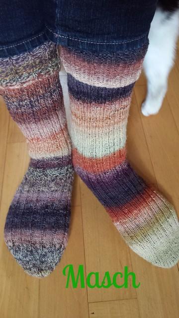 Southdown Socken