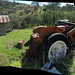 Watsons Creek, Hill later Birch farm complex b1878-,   2014