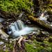 Cooling Creek