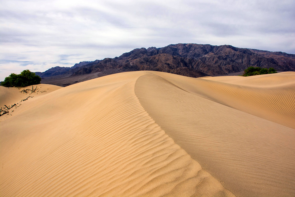 Mesquite Flat Dune, Death Valley National Park