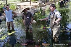Tony Moore, Mike Giles & Brandon McLane 2014 @ Botanic Gardens Denver