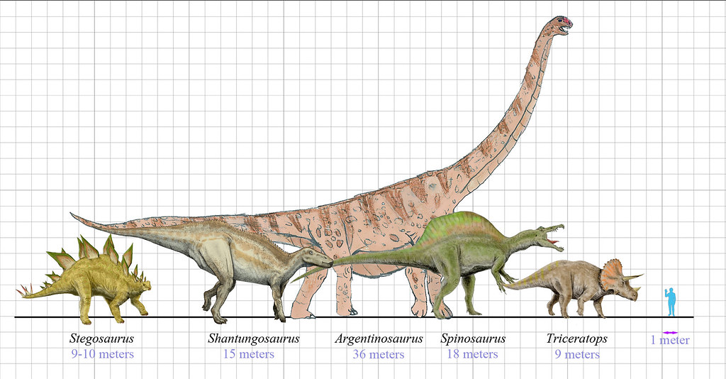 Dinosaurs size | Comparison of Dinosaurs size (scale ...