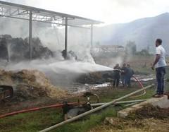 incendio azienda zootecnica