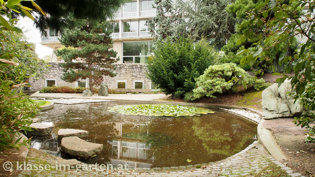 Paris unesco garden of peace jardin isamu noguchi pond for Jardin unesco