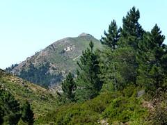 Sentier de la crête Vaccia - Cavalletti : Punta di I Cavalletti
