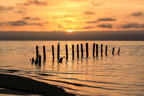 Photo of sunrise over Chesapeake Bay coastline