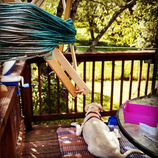 Winding yarn while Zeus chills out on the porch... #love #dogstagram #mybaby #knitstagram #Madelinetosh #newengland #relax