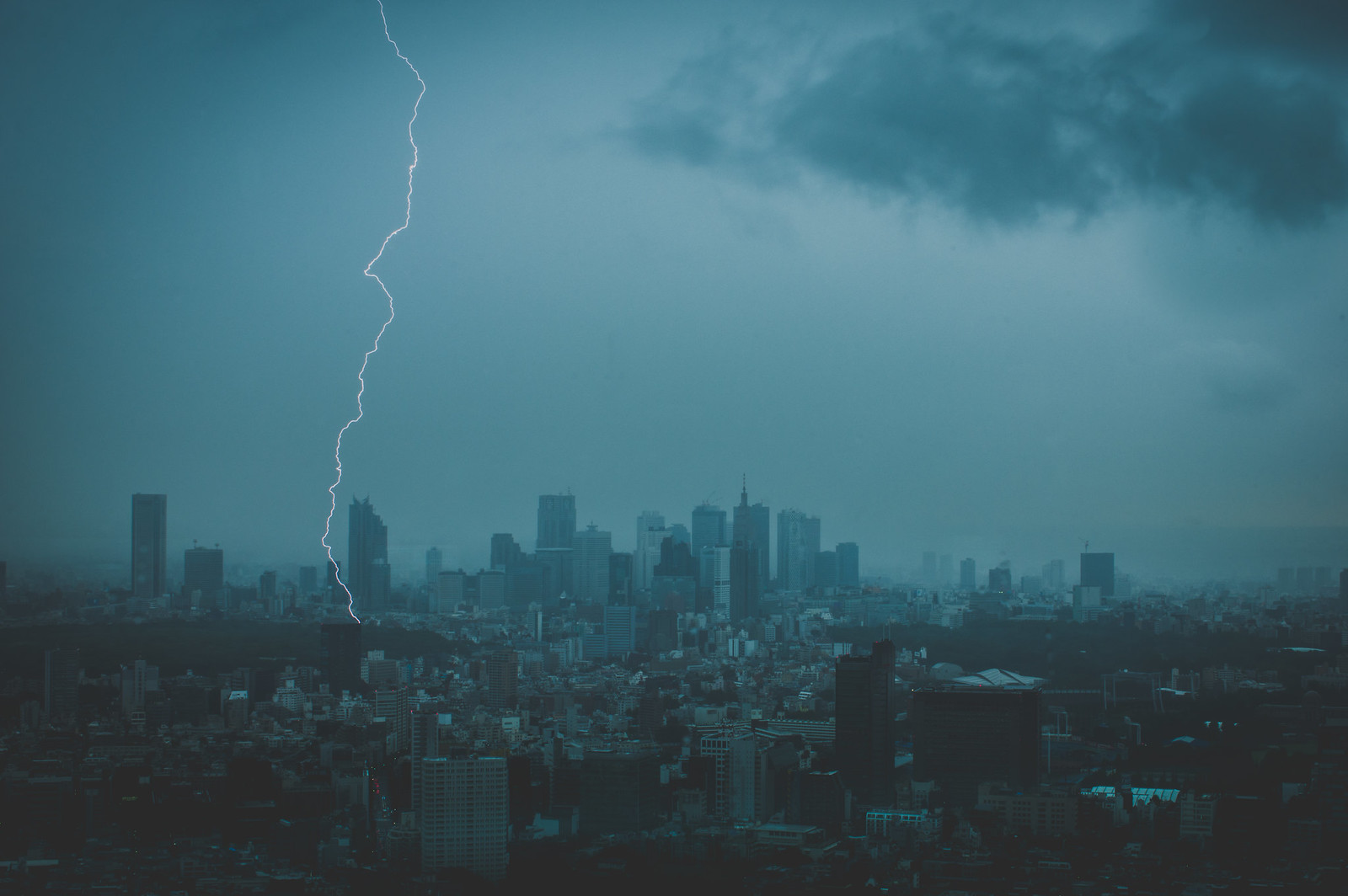 Whimsical Tokyo