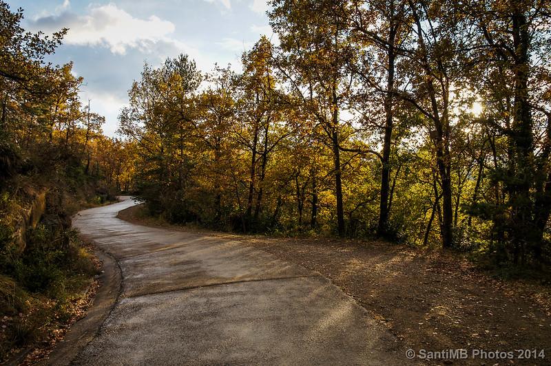 Más colores de otoño