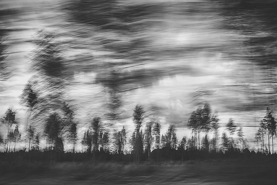 © Mikhail Tormakov