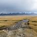 The Pamirs, Part 1: To Zorkul Nature Reserve