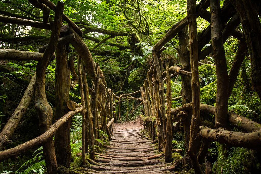 Puzzlewood Forest Of Dean Chrisgj6 Flickr