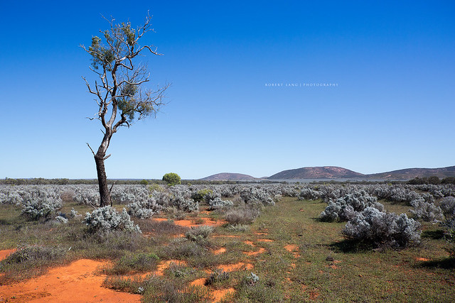 Gawler Australia  city photos : Gawler Ranges, South Australia | Flickr Photo Sharing!
