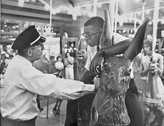 Arrest on the Carousel at Glen Echo Park: 1960