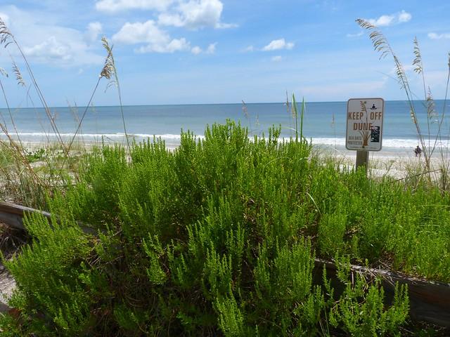 Satellite Beach Fl Wiki