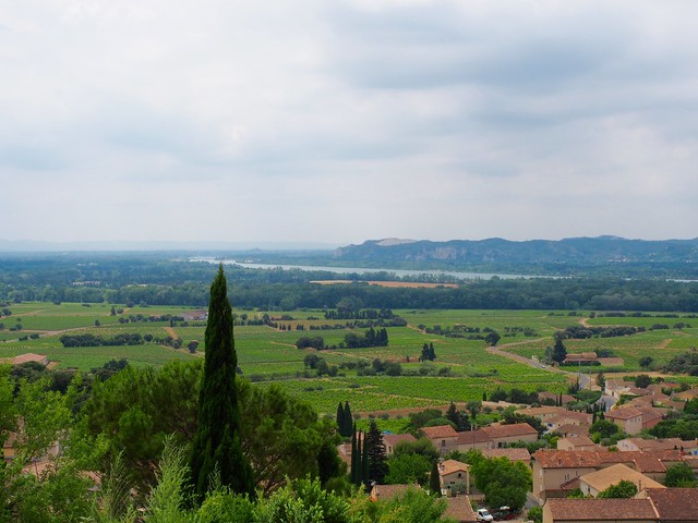 view from the château in Châteauneuf-du-Pape