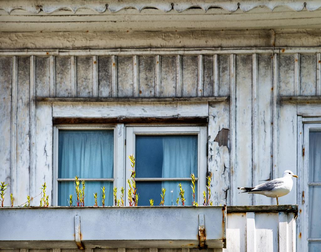 Window, Grebbestad