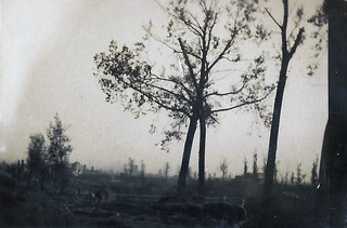 Ypres in the distance