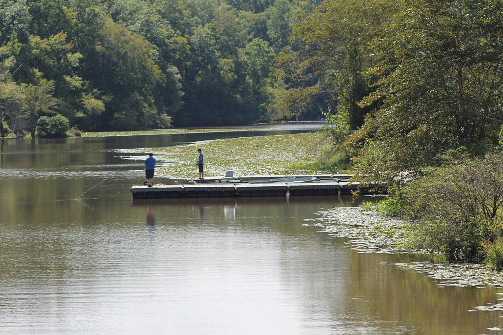 Po fishing on swift creek lake virginia state parks for Virginia lakes fishing