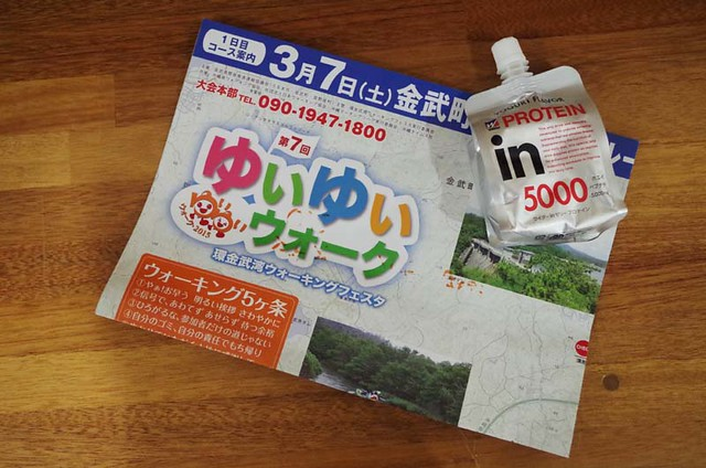 toomilog-yuiyuiwalk201503081503