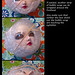 How to safely wrap a BJD head