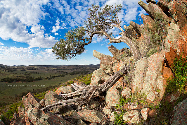 Gawler Australia  city photo : Gawler Ranges, South Australia | Flickr Photo Sharing!
