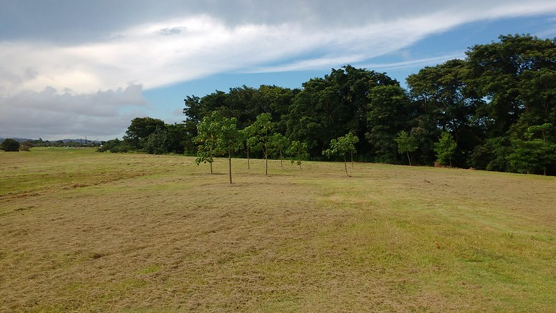 botanic gardens site