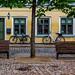 Denmark #15 Odense