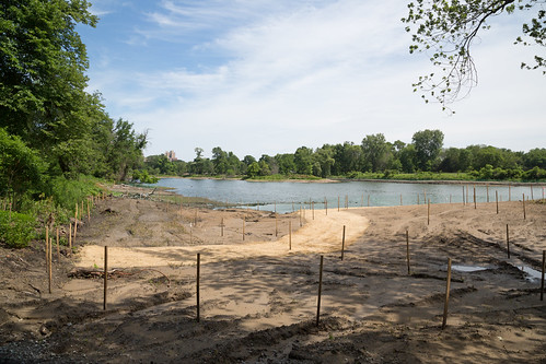 Overlook Site, Partially Drained Pond