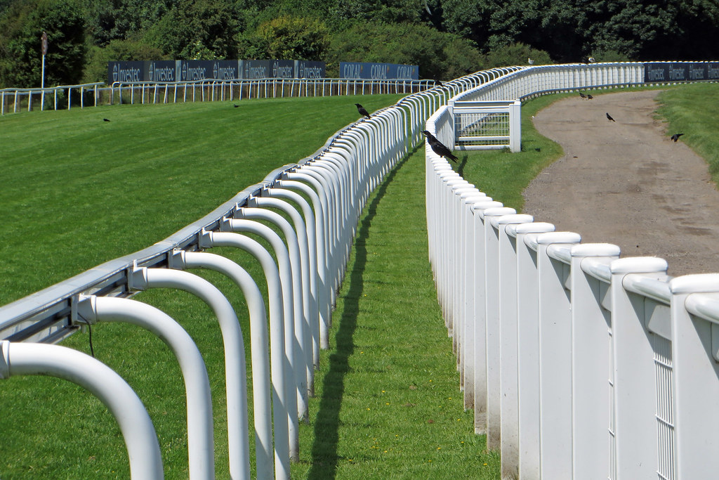 Epsom racecourse rails the day after the derby plus for 2b cuisine epsom downs