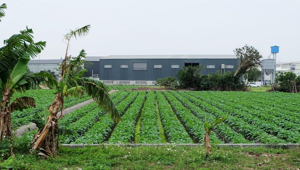 工廠管理輔導法違章農地工廠合法化納管申請特定工廠登記土地變更特定目的事業用地工業用地買賣工廠租售