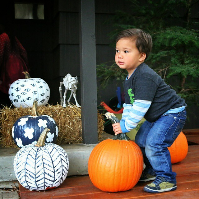 Caught him trying to steal a pumpkin for the road.  #ohluka