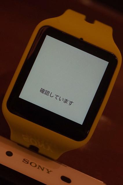 SmartWatch3 SWR50 17