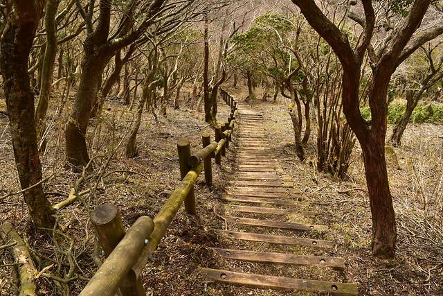 魂の山の階段