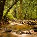 Water-Stream