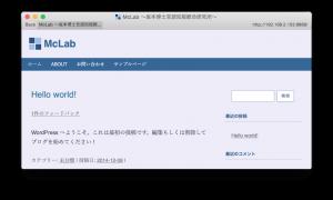 サイトアドレスが解消され、CSSが効くようになったWordpressのブラウザ画面