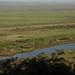 View of sugar cane plantation