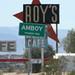 Roy's Motel Amboy