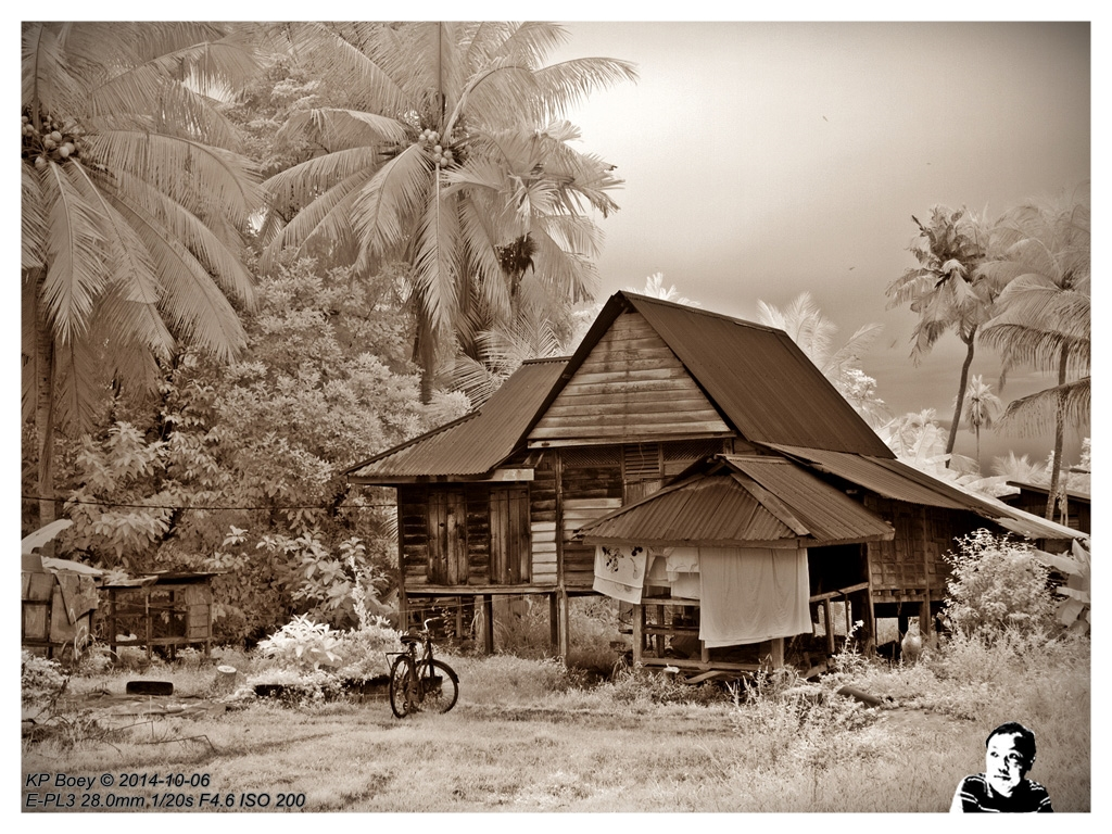 village wallpaper company