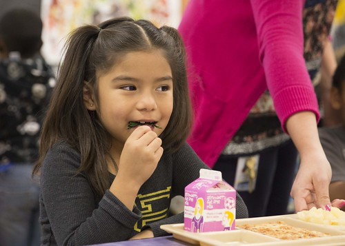 A girl eating her school lunch