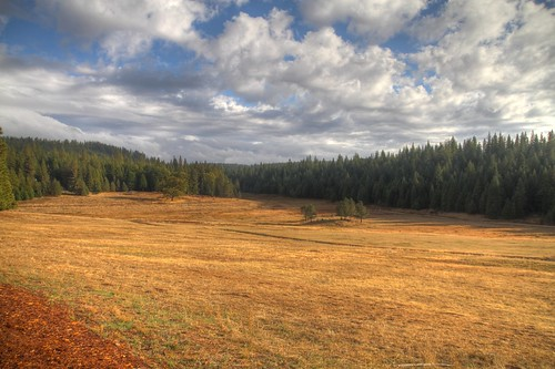 Leoni Meadows 7 HDR