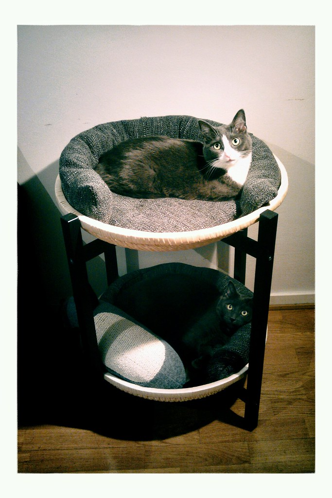 Diy Cat Furniture Ikea Hack Trendig 2013 Tray Table With