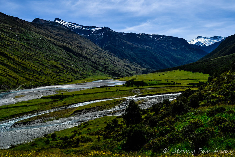 Along the Rob Roy Glacier walk.