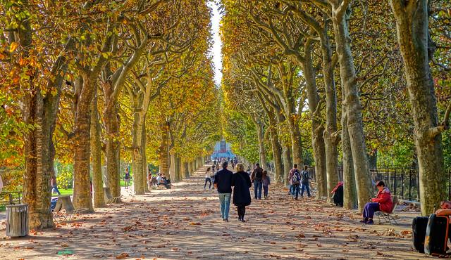 Mémoire d'automne @ Tuileries Garden