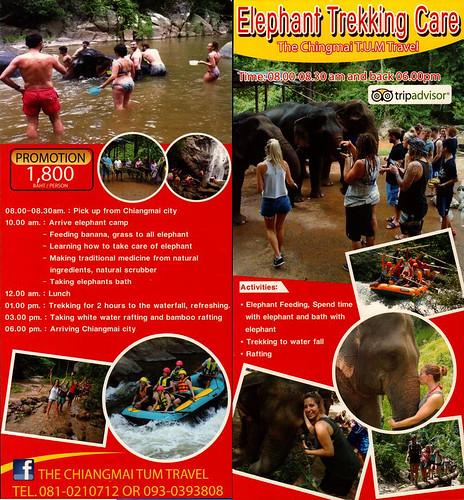 The Chiangmai TUM Travel - Elephant Trekking Care Brochure