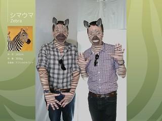 Zebra men