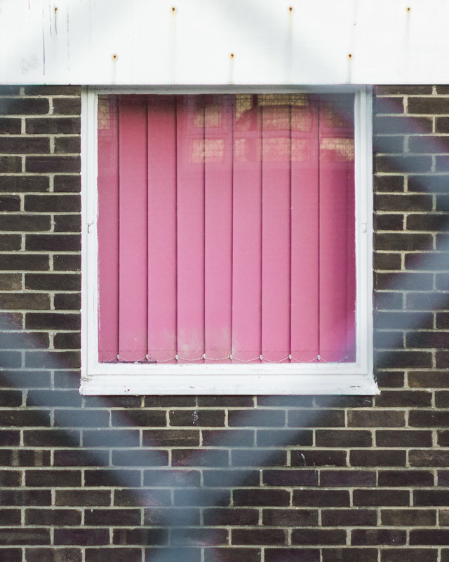 pink blinds through fence